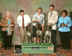 Three Champions from the Singltrak/Buster Litter at the GSPCA National Speciality Show in Denver, CO